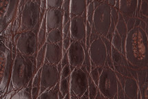 Crocodile Flank Skin Glazed Brown