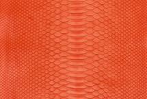 Python Skin Matte Tangerine Tango
