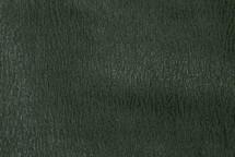 Shark Skin Semi-Matte Green
