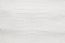 Alligator Skin Belly Matte White 25/29 cm