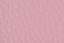 Leather Atlantic Camellia