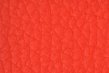 Leather Atlantic Geranium