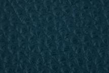 Leather Atlantic Jean