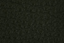 Leather Atlantic Loden