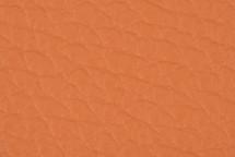 Leather Atlantic Salmon