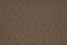 Leather Atlantic Taupe