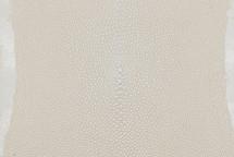 """Stingray Skin Long Shape Shagreen White 4"""""""