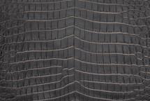 Nile Crocodile Skin Belly Two-Tone Black/White