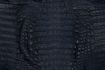 Caiman Skin Hornback Matte Navy