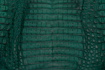 Caiman Skin Belly Matte Forest