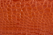 Alligator Flank Skin Glazed Brick Road