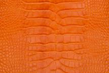 Alligator Skin Belly Matte Orange 23/27 cm Grade 4