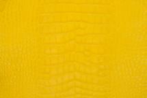 Alligator Skin Belly Matte Yellow 25/29 cm Grade 4