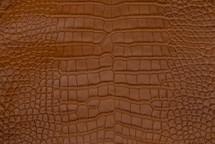 Alligator Skin Belly Matte Tan 23/27 cm Grade 4