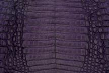 Caiman Skin Belly Matte Purple