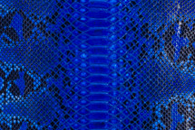 Python Skin Diamond Back Cut Unbleached Glazed Cobalt