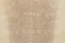 Lizard Skin Matte Semi-Bleached