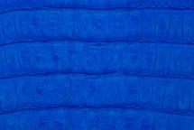 Caiman Tail Matte Cobalt