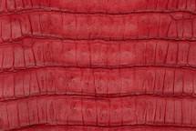 Caiman Tail Matte Red