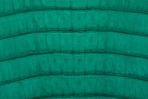 Caiman Tail Matte Emerald