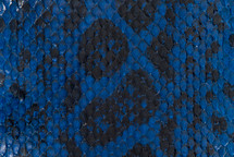 Anaconda Skin Glazed Cobalt