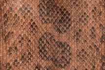 Anaconda Skin Glazed Saddle