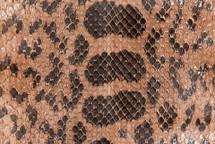 Anaconda Skin Matte Taupe