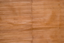 Eel Skin Panel Glazed Beige