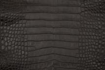 Alligator Skin Belly Garment Brown