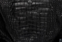 Alligator Skin Belly Matte Black 65+ cm Grade 4