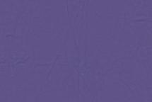 Lamb Skin Violet