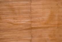 Eel Skin Panel Matte Beige