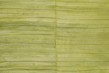 Eel Skin Panel Matte Lime