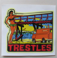 Vinvanco Surf Spot Sticker #1 of a series -- Trestles