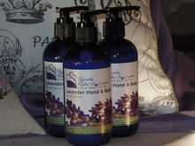 Lavender Hand & Body Lotion 8oz
