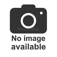 Fork Seals - CHS021645