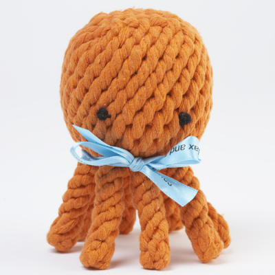 Elton the Octopus