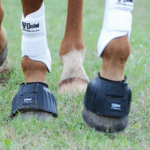 Cashel Rubber Bell Boots with Velcro