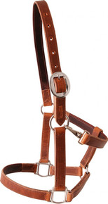 Martin Brown Leather Halter