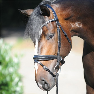 Charlotte Snaffle Bridle in Black