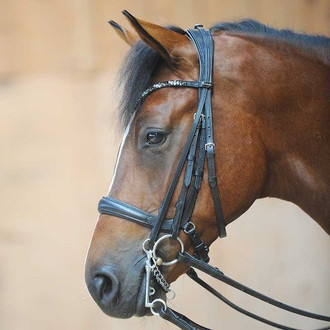 Combi Ivonne Bridle (snaffle and weymouth)