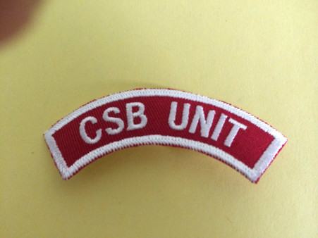 This insignia is designed to be worn by a leader and doesn't signify any particular area of involvement. (Stockade, Battalion or Committee).  This insignia is worn on the left shoulder of the uniform shirt.  The unit numerals are affixed immediately under the insignia and indicate the individual church unit number.