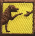 Dogs OA Patch (Package of 10 )