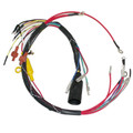 Mercury Internal Engine Wiring Harness 414-6220A16