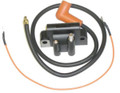 Ignition Coil Kit for Pulse Packs 183-2382