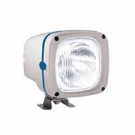 Gas Discharge (HID) Floodlight D2 S Xenon Bulb 24V
