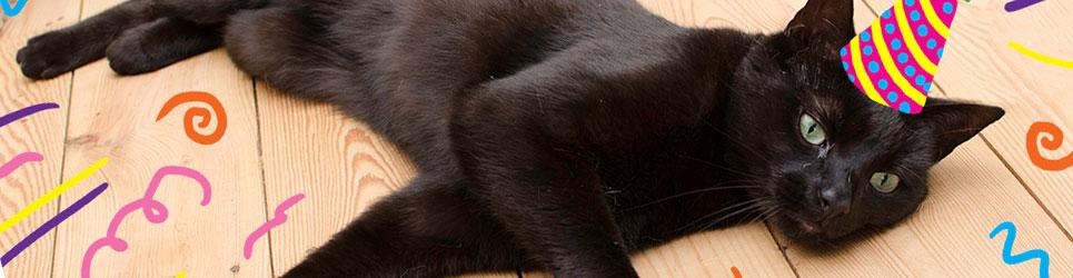 black0sale.jpg