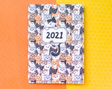 2021 Diary