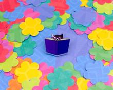 Pixie Book Cat -  Acrylic Pin