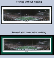 Michigan State Spartan Stadium End Zone Panoramic Poster